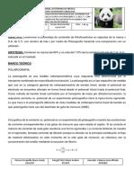 nitrofurantoina-polarografia-1