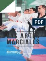 Artes Marciales Entrenamiento de Resistencia Me Joseph Correa Instructor de Me