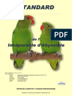 Inseparable Abyssinies v1