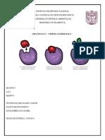 Cinetica Enzimatica Bioquimica 3 7