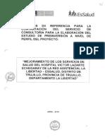 TdR Elaboracion Perfil