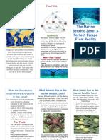 Katie's Oceanic Benthic Brochure