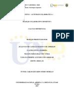 Trab Colab GRUPO Calculo diferencial