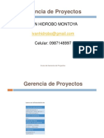 Gerencia de Proyectos
