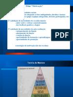 Motivação e trabalho em equipa.pdf