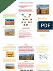 Isabel's Desert Travel Brochure