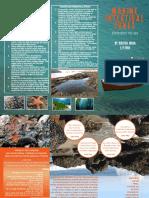 Kirsten's Mediterranean Intertidal Travel Brochure