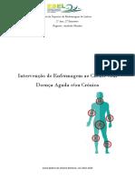 IECDAC T2