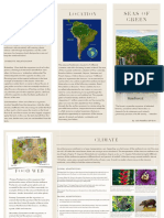 Julia's Amazon Rain Forest Travel Brochure