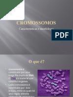 Aula Cromossomos e as