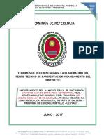 Tdr - Perfil Tco. Pavimento y - Sameamiento Jr. Miguel Grau y Otros.