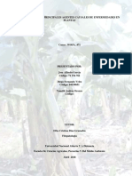 Enfermedades Del Cultivo de Banano.docx Fase3