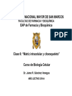 6 Clase 6 Matrix Intrac Citoesq Dictado 21-04-14