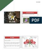 Aula 9 - Morfologia de Angiosperm As - Flor, Fruto e Sementex