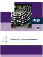 PP Ch 4  Options for organizing business