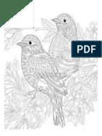 Mandala Pájaros