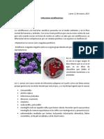 17. Infecciones estafilococicas