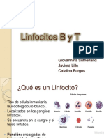 linfocitosbyt2-120809184255-phpapp02