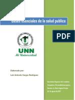 Bases Esenciales de La Salud Publica