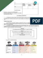 Guía Variables Lingüísticas  Adecuada