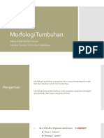 Morfologi Tumbuhan Vegetatif