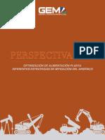 Optimizacion de Alimentacion Planta Diferentes Estrategias de Mitigacion Del Arsenico