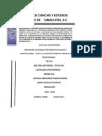 TESIS_FINAL_WORD.docx