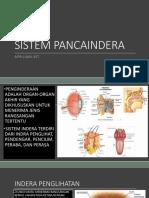 Sistem Pancaindera