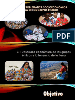 3.1 Desarrollo económico de los grupos étnicos y la tenencia de la tierra.pptx