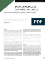 Psicooncología Un Modelo De