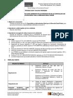 Proceso Cas 054 2018 Especialista en Infraestructura Rural Direccion Zonal Pichari