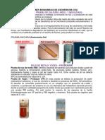 244506057 Pruebas Bioquimicas E Coli Docx