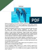 Delfin Ul