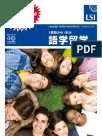 LSI UK Japanese Local Brochure