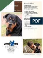 winterparkveterinaryhospitalrottweiler.pdf