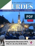 Revista Peregrinación  Hospitalidad Lourdes 2018.pdf