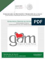 Lineamientos de GAM.pdf