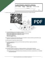 178524604-Teste-Modulo-1-07-11-2006.pdf
