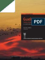 Hector Garrido_Guadiamar, Ciencia, Técnica y Restauración. El Accidente Minero 10 Años Después.pdf