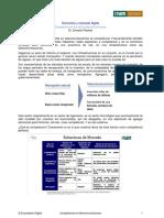 TranscriptEconomia-CompetenciaTelecom