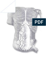 Sobotta, Atlas of Human Anatomy 13rd ed, Vol 2.pdf