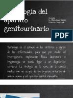 Semiologia Del Aparato Genitourinario
