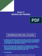 Tema 15. Medios de Prueba