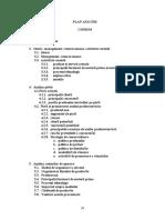 64163506-Plan-Afaceri-Ideal-Cassa-Design.doc
