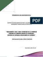 TDR - EXPEDIENTE TECNICO Mejoramiento Canal de Riego -Lambrama