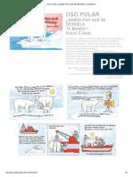 Oso Polar, ¿Sabes Por Qué Se Deshiela Tu Mundo