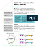 Validated Pluripotency Promoter Reporter