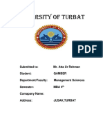 PM report1.docx