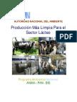 Guia_de_PML_Sector_Lacteo.pdf