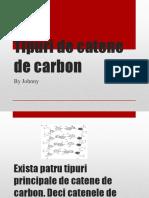 tipuri_de_catene_de_carbon.pptx